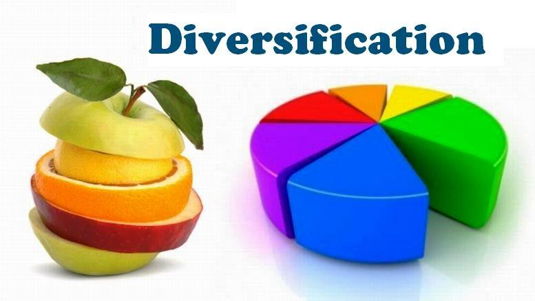 The Concept of Diversification